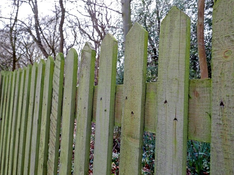 wooden garden fence ideas picket fencing
