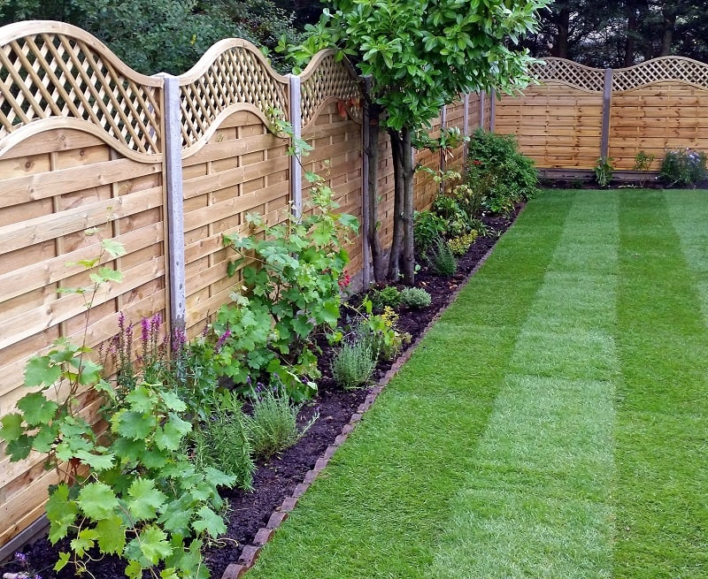 Wooden Garden Fencing Ideas, Pirsford Panel With Covex Top