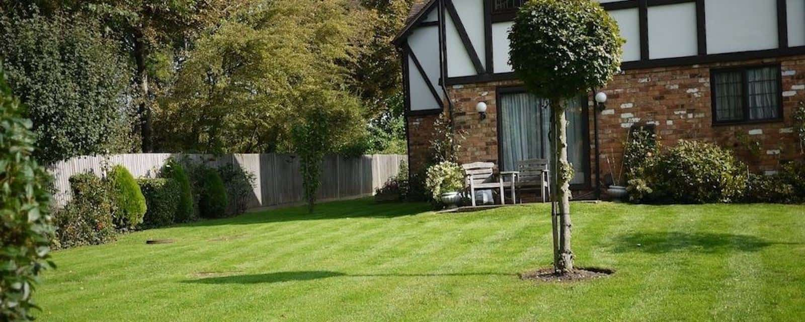 Domestic Garden Maintenance London Picture